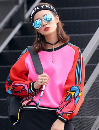 Embroidered fleeced sweatshirt